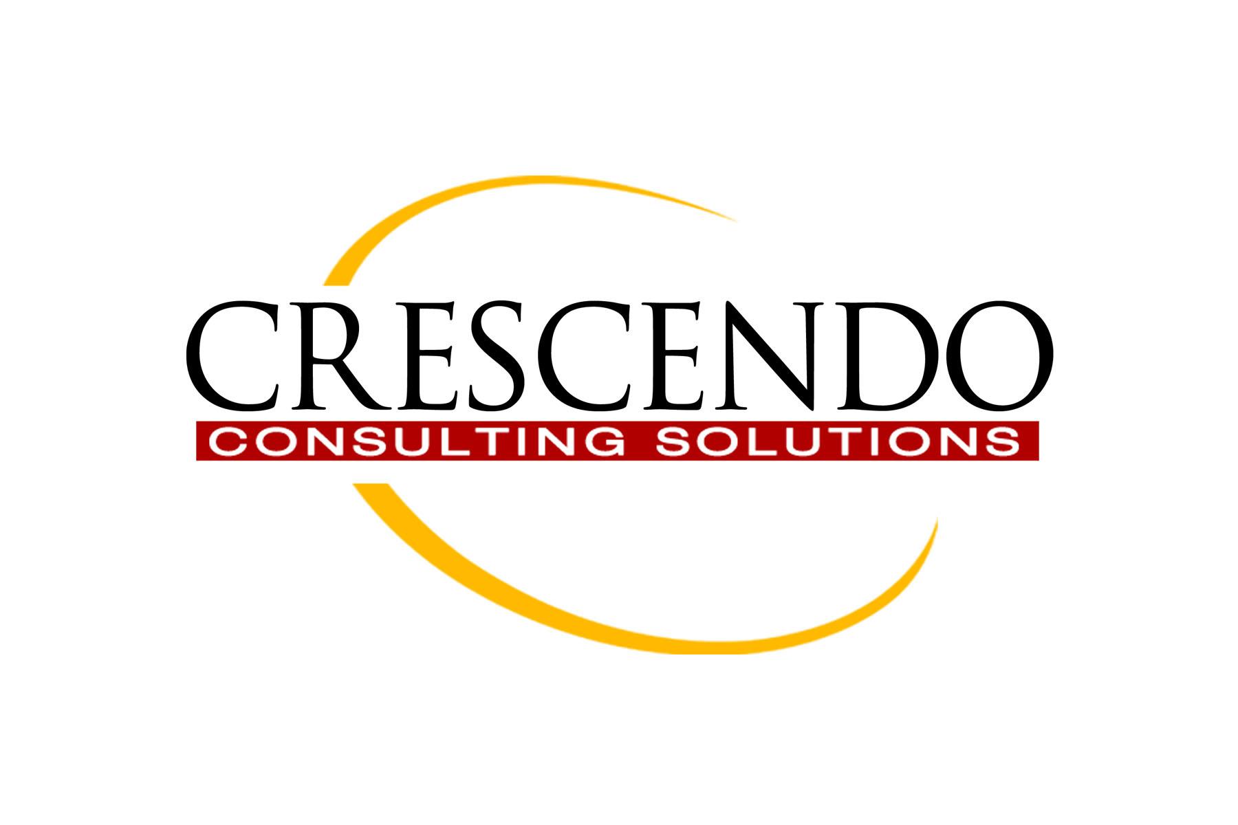 Company Brand Designs | Screaming Lunatic Design Agency